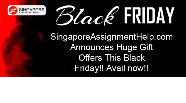 black friday assignment offer