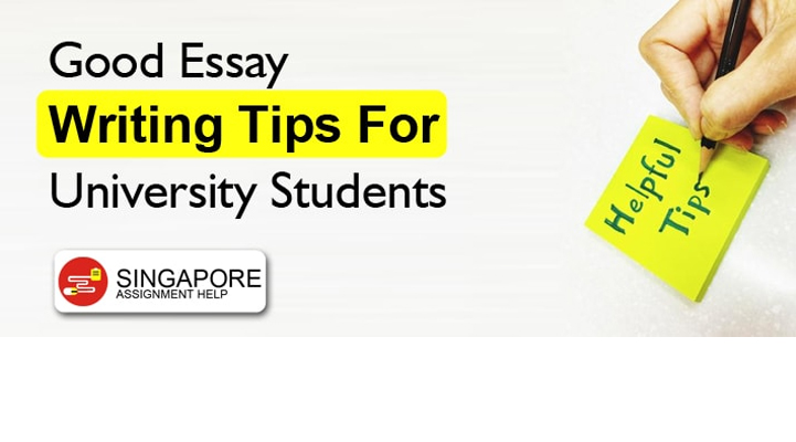 Good Essay Writing Tips For University Students