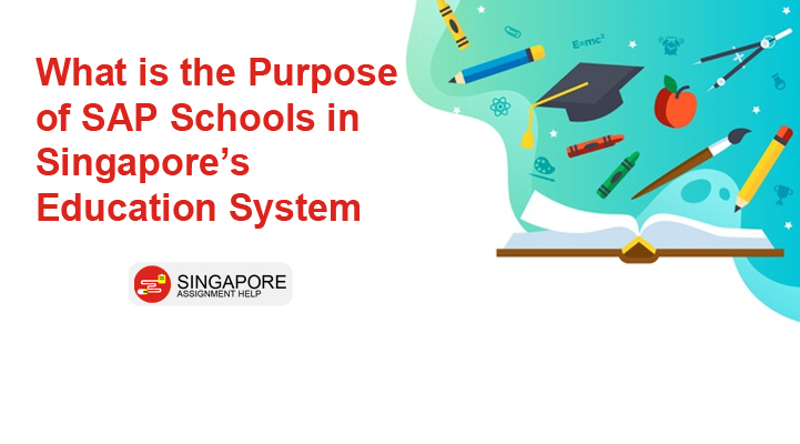 What is the purpose of SAP schools in Singapore's education system?
