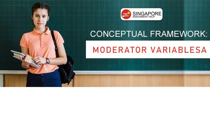 Conceptual Framework Moderator Variables