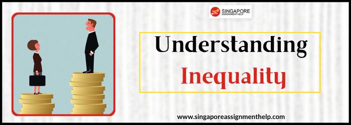 SCO117 Understanding Inequality SUSS Assignment Sample Singapore